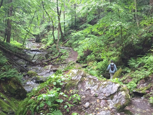 Julie Hart, senior manager of stewardship and education with the Dutchess Land Conservancy, walks along Stone Church Brook at the Dover Stone Church Preserve in Dover Plains on Monday, June 1, 2015.