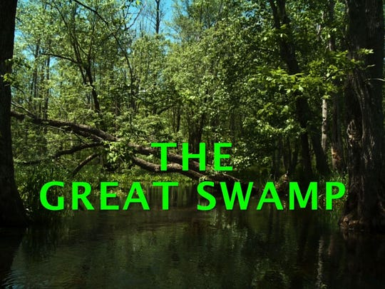 "A still from the video ""The Great Swamp."" The video, which is narrated by James Earl Jones, will premiere at this year's event."