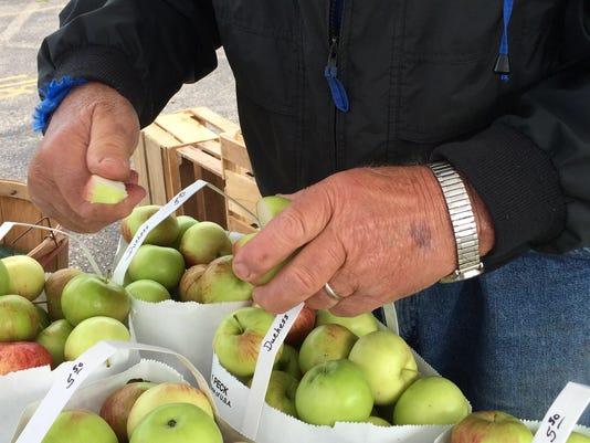 Apples C.jpg
