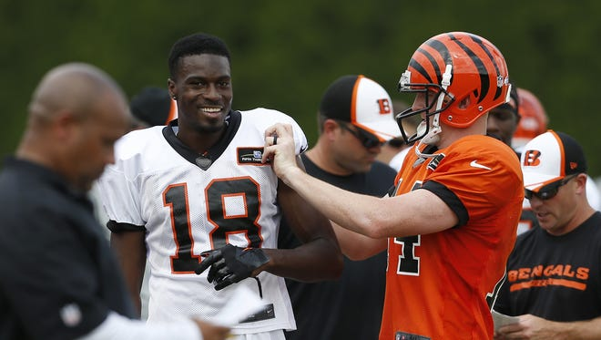Cincinnati Bengals quarterback Andy Dalton tucks the sleeves under for wide receiver A.J. Green to making his arms look a little bigger after he got in a crap during training camp downtown.