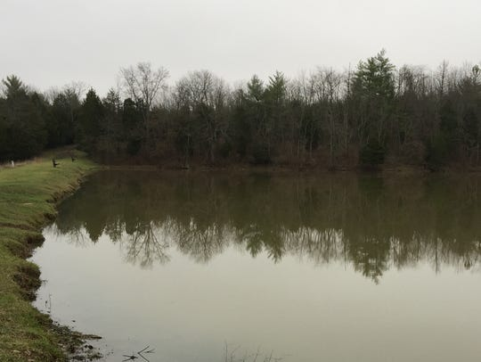 Big Bone Lick State Historic Site's lake is being drawn