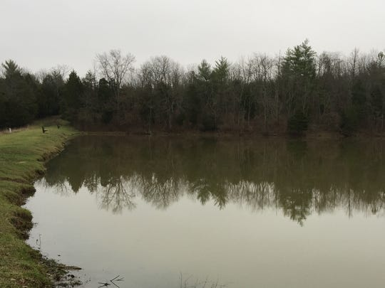 Big Bone Lick State Historic Site's lake is being drawn down because of a leak in the dam.