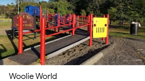 """Woolie World Playground,'' located within the Washington Street Park, could get a top-notch renovation if town meeting voters approve funding to replace the existing 30-year-old structure June 23, 2020, that is considered ""beyond its useful life,'' and no longer code-compliant."