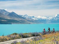 Exclusive Deals: Biking & Walking Tours