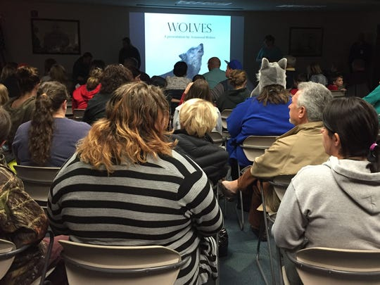 A listener with a furry animal cap was among about 140 people who showed up for Ironwood Wolves' talk at Mansfield's main library Tuesday.,