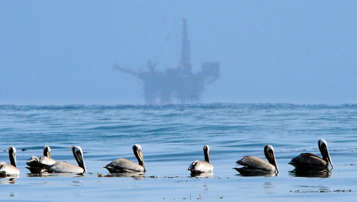 In this May 13, 2010 file photo, pelicans float on