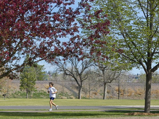 Trees bloom in Gibson Park in Great Falls. The city
