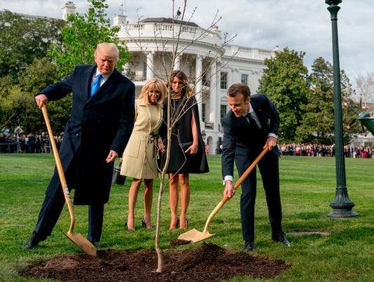 AP TRUMP MACRON TREE A FILE USA DC