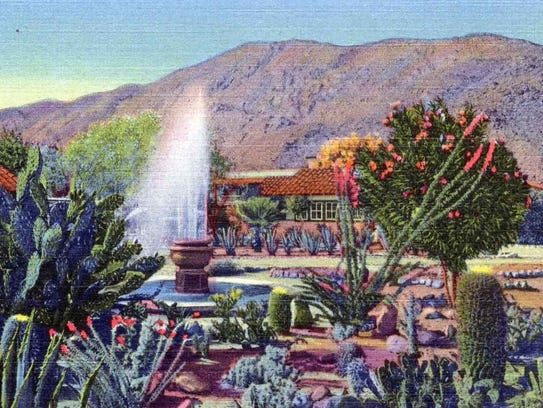 The Palm Springs Hotel cactus garden.
