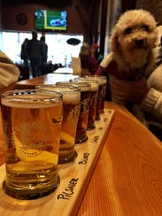 FAL 1206 Beer Bozeman White Dog
