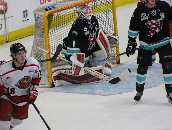 The Shreveport Mudbugs swept the Odessa Jackalopes