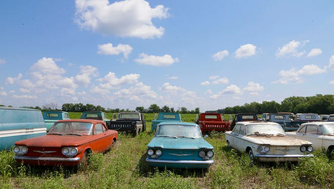 In this photo from Aug. 12, 2013, rare Corvairs and pickup trucks are lined up in a field near  the former Lambrecht Chevrolet car dealership in Pierce, Neb. Next month, bidders from at least a dozen countries and all 50 U.S. states will converge on Pierce, a town of about 1,800 in northeast Nebraska, for a two-day auction that will feature about 500 old cars and trucks, mostly Chevrolets that went unsold during the dealershipÃ?s five decades in business. About 50 have fewer than 20 miles on the odometer, and some are so rare that no one has established a price. The most valuable could fetch six-figure bids. (AP Photo/Nati Harnik) ORG XMIT: NENH104