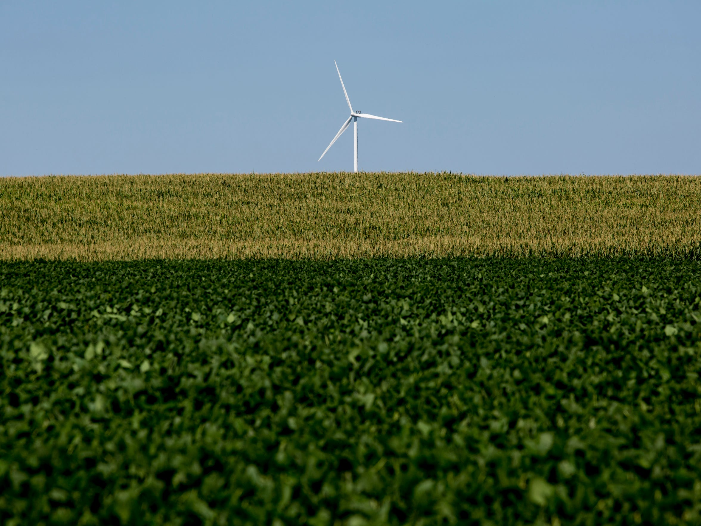 A wind turbine rises above a hill covered in crops Thursday, August 18, 2016 in Marion Township.