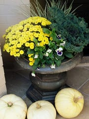 Fill an urn, or a pot with mums, cabbage, and pansies. Then encircle your planter with white pumpkins. Place by your front door to greet your friends and family.