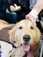 Cayenne is a therapy dog at Our Lady of Lourdes.