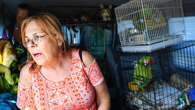 Betty Parker of Hollywood, Florida sits in her van with two parrots, a cat, and her dog in a parking lot at the Atlanta Motor Speedway in Hampton, Georgia on Saturday, September 9. The speedway opened up their parking and campsites for evacuees from Hurricane Irma.