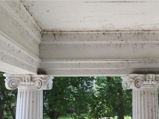 This photo shows the front portico of the University