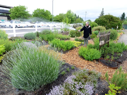 Master Gardener Nancy Mortenson waters plants at the