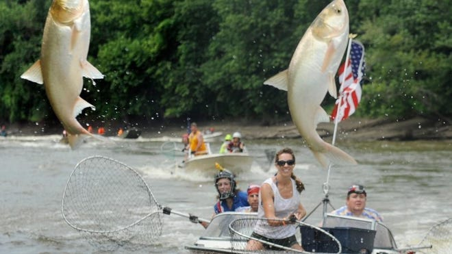 In this 2014 photo, participants try to snag Asian carp at the Redneck Fishing Tournament in Bath.