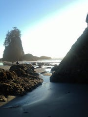 What awaits you at the end of the trail to Second Beach- A breathtaking view of the Pacific Ocean.