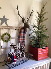 An old crate makes a whimsical holder for this small tree.