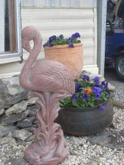 What do the neighbors think of my pink flamingos? Luckily, they like them, but what's more important is that I do.