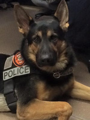 K9 Chero will return to work soon after veterinarians removed a foreign object from his stomach.