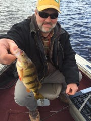 The inland perch bite is picking up.