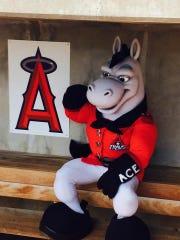 Arkansas Travelers mascot Ace.