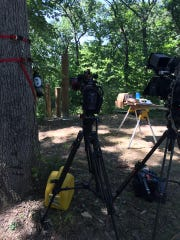 A film crew from DIY's Treehouse Guys is at the North