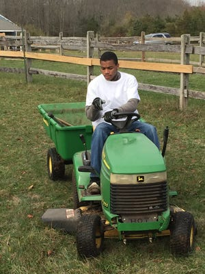 Once a week, 18-year old Ewing resident, Javier, a student from Rock Brook School in Skillman, NJ, makes his way to Kismet Farm, also based in Skillman, to work at Club O.T.I.S., a special program which stands for Opportunity, Training, Inspiration and Support.