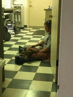 Missy Houghton, humane agent with the Humane Society of Richland County, sits with an injured pit bull Thursday. The pit bull was stabbed during an apartment break-in Thursday morning.