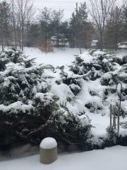 Blizzard of March 2017 in Cedar Grove