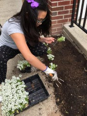A volunteer at East Rutherford Memorial library helps plant a garden in May 2016, as part of a monthly Random Acts of Kindness initiative.