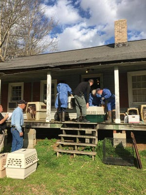Houston County authorities and Dickson County Humane Society members work to remove dogs and cats from 'horrible' conditions inside a home.