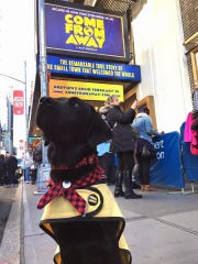 "Bear saw ""Come From Away"" in Washington, D.C., and"