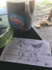 A sketch of Leon the horse, as done by a visitor to Lawrence's camp near Crowder, Oklahoma, July 25, 2017.
