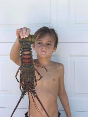 Peyton Lodatao, 8, of Jensen Beach, shows off a smooth-tailed lobster caught Wednesday by Tony Hill on the second reef off Bathtub Beach in Stuart.