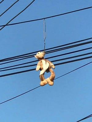 Stuffed monkey hanging from powerlines in apartment complex near Bowman Field.