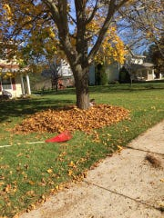 Leaf-raking isn't so annoying when your kids get to play in them first.