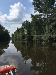 Angie Davis-Griggs attempted to get back to her home by boat during extensive flooding Sept. 3.