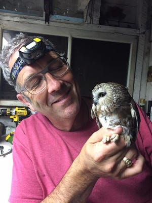 Richard Hill, a volunteer bird bander at the Cedar Grove Ornithological Research Station, Inc. is holding a Northern Saw-Whet Owl, one of the smallest owls caught and banded during Wisconsin's fall migration.