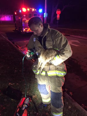 Indianola firefighter Brad Davison attempts to revive a tabby cat after a house fire on North Howard in Indianola. The cat eventually died from hydrogen cyanide poisoning.