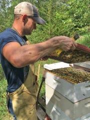 Justin Engelhardt works with his honeybees.