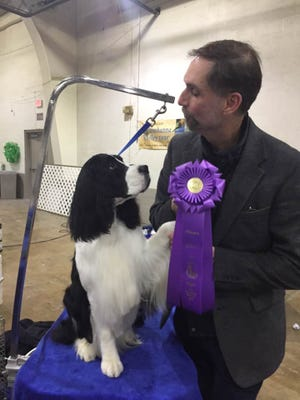 Neal Henderson, of Dover Township, poses with English springer spaniel Carson. Co-owned by Henderson and Deb Kirk, of York City, Carson will be competing in the 2018 Westminster Kennel Club Dog Show at 1 p.m. Tuesday, Feb. 13.