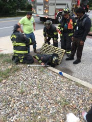 Firefighters pull a cat from a storm drain in Whiting.
