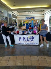 Carolyn Robinson and Hope Miller volunteer at the H.A.L.O.