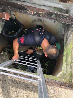 St. Johns County Fire Rescue workers attempt to remove ducklings from a storm drain Monday at the intersection of Woodgrove and Mangrove Thicket Boulevard.