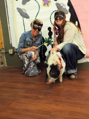 When you stopped in Gallery 7 and Artlandia you would often find Frank, the rescue pig and honorary host of the gallery, along with his guardian Amber.