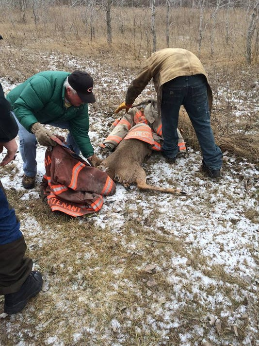 Deer rescue by Charlotte Fire Department